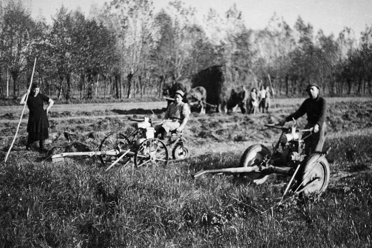 Models 243 & 246 working in a field in 1946