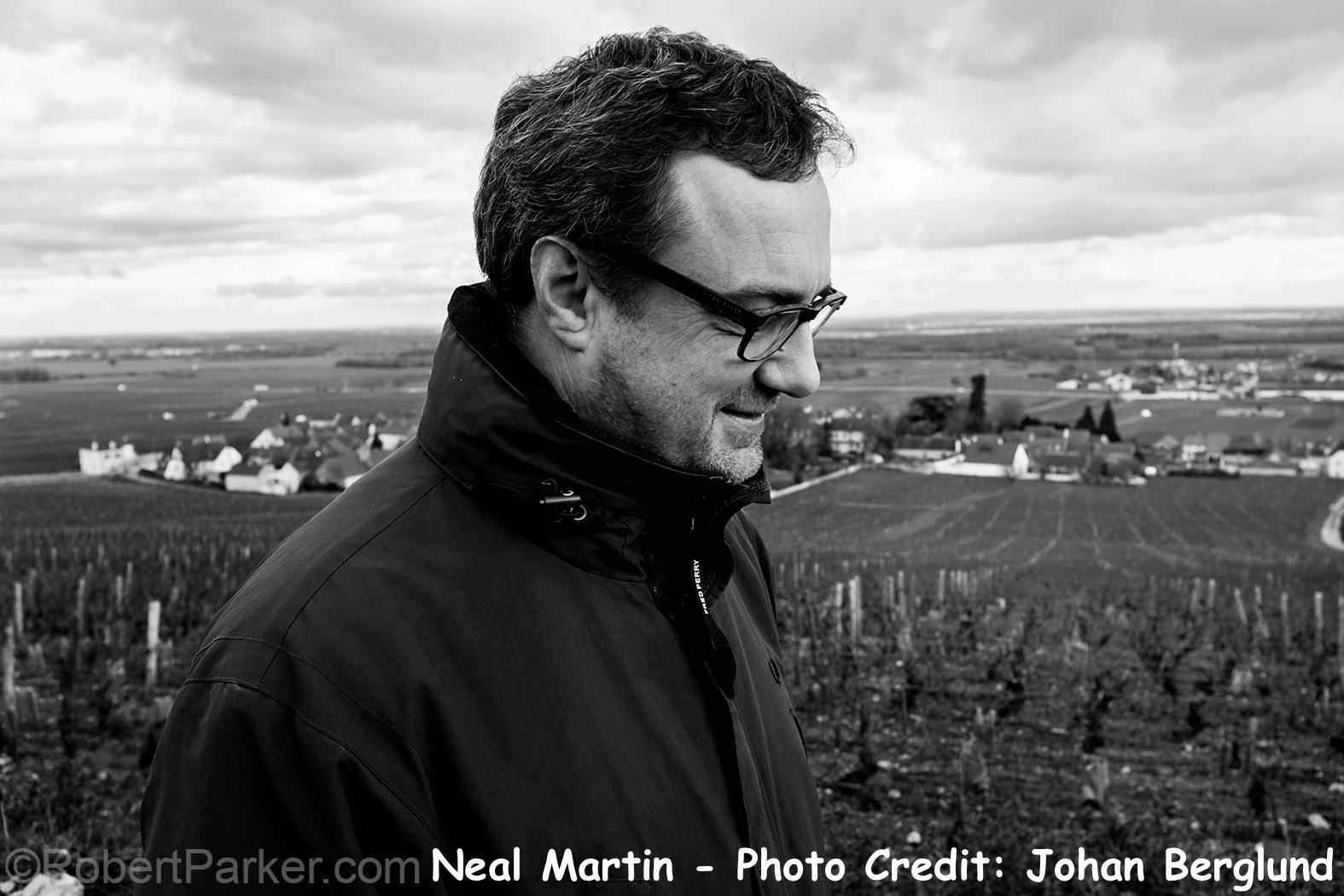 Últimas puntuaciones de bodegas artadi en the wine advocate.