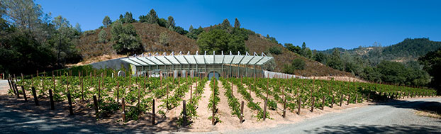 Winery_Panorama