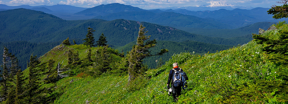 10+ Essentials for Every Hike