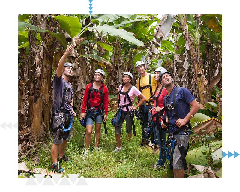 Questions We Hear About Zipping on Big Island