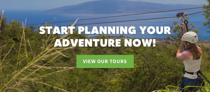 Start Planning Your Adventure Now
