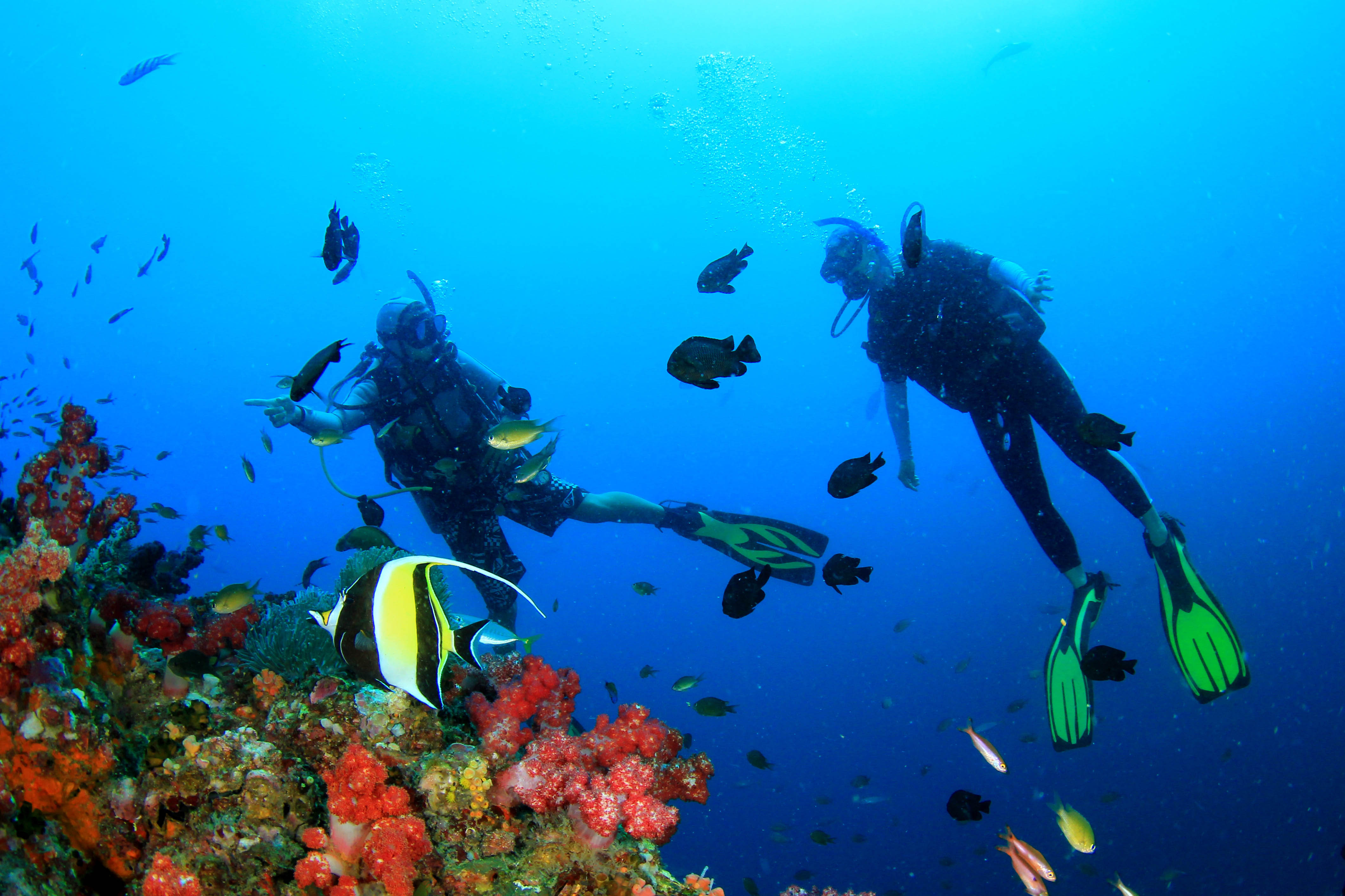 Scuba diving on coral reef underwater with fish in Hawaii
