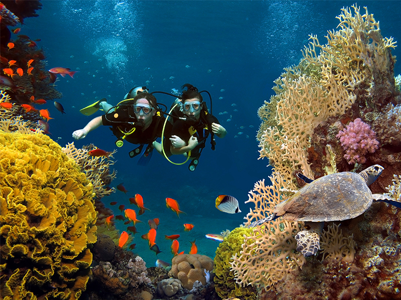 Why can't you go scuba diving before ziplining?